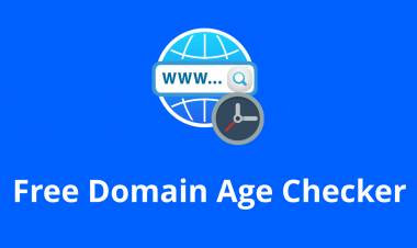 Free Domain Age Checker