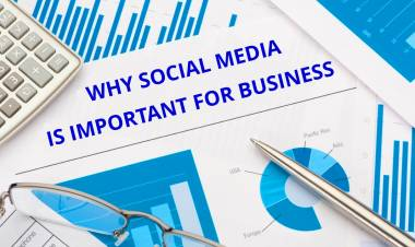 Why Social Media is so Important for Your Business