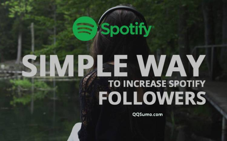 Here are Some Tactics To Get More Playlist Followers On Your Spotify Account