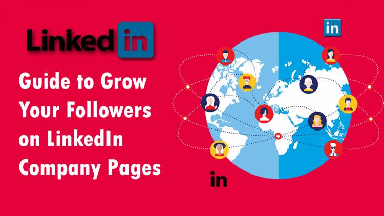 LinkedIn Followers: Guide to Grow Your Followers on LinkedIn Company Pages