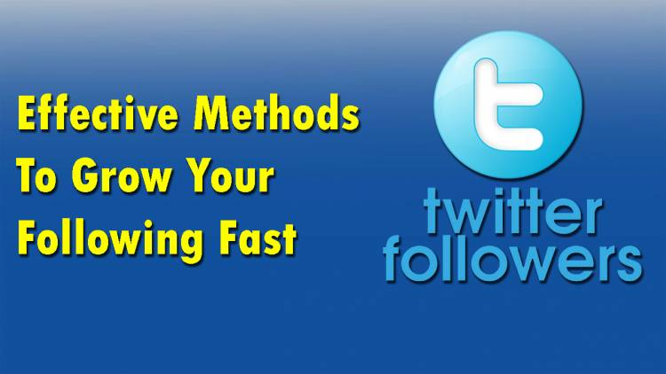 Twitter Followers: 8 Effective Methods To Grow Your Following Fast